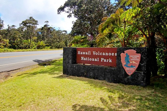 A nature trail through dense tropical forest in Hawaii Volcanoes National Park.